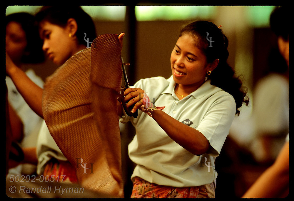 Woman holds rubber mat in air to spot any impurities she must snip out before export; Krabi. Thailand