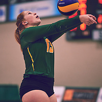 5th year libero, Taylor Ungar (13) of the Regina Cougars during the Women's Volleyball home game on Fri Jan 25 at Centre for Kinesiology, Health & Sport. Credit: Arthur Ward/Arthur Images