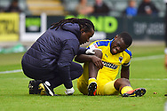 Deji Oshilaja (4) of AFC Wimbledon down with an ankle injury during the EFL Sky Bet League 1 match between Plymouth Argyle and AFC Wimbledon at Home Park, Plymouth, England on 6 October 2018.