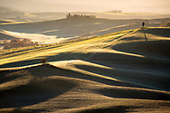 The first lights of the dawn caress the rolling hills in the orcia valley in the province of siena, in Tuscany, Italy