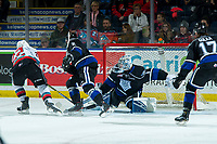 KELOWNA, BC - JANUARY 3:  Dillon Hamaliuk #22 of the Kelowna Rockets tries to put the puck in the net of Shane Farkas #1 of the Victoria Royals during second period at Prospera Place on January 3, 2020 in Kelowna, Canada. (Photo by Marissa Baecker/Shoot the Breeze)