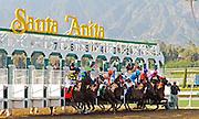 The Starting Gates at Santa Anita Park