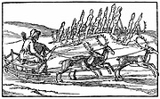 Samoyed travelling on sleigh pulled by reindeer. In background stands a group of religious idols, some with reindeer antlers planted in front of them. Samoyed peoples, of which the Nenets the most numerous, inhabit Northern Siberia. Dutch woodcut from late 16th, early 17th century.