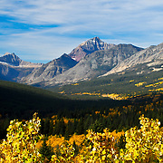 glacier national park ,cutbank valley, fall