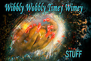 Famous humourous quotes series: People assume that time is a strict progression of cause to affect, but actually, from a non-linier, non subjective point of view it is more like a big ball of wibbily wobbly timey wimey...stuff