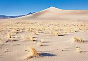 Nye County dunes, NV