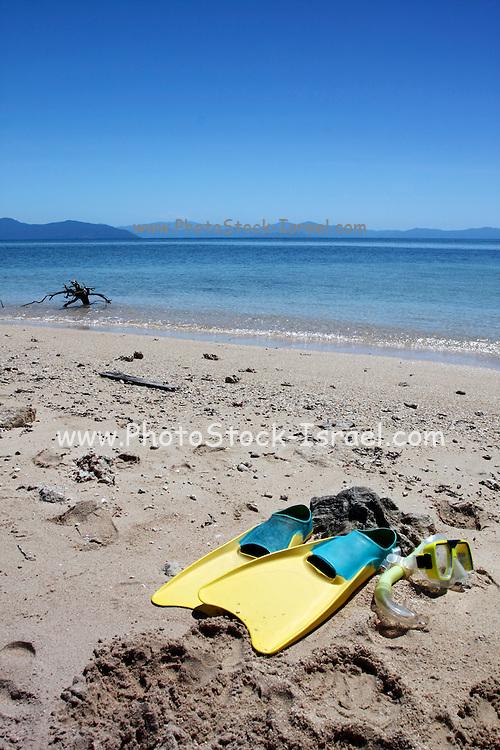 Summer vacation beach concept