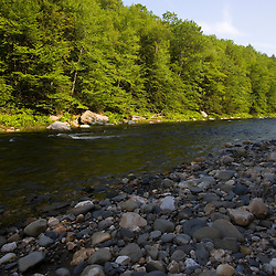 West Branch of the Westfield River in Chesterfield, Massachusetts.  Below Chesterfield Gorge.