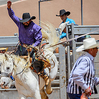 Saddle bronc rider Jared Hunt holds on as his horse jumps from the chute during the Gallup Inter-tribal Indian Ceremonial rodeo Friday at Red Rock Park.