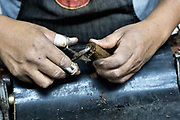 A cigarmaker called a torcedor trims the ends of a fine cigar at the Santa Clara cigar factory in San Andres Tuxtlas, Veracruz, Mexico. The factory follows traditional hand rolling using the same process since 1967 and is considered by aficionados as some of the finest cigars in the world.