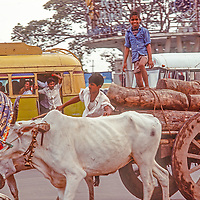 Human-powered transport vies with trucks and buses  in the streets of  Dhaka, Bangladesh in 1977.