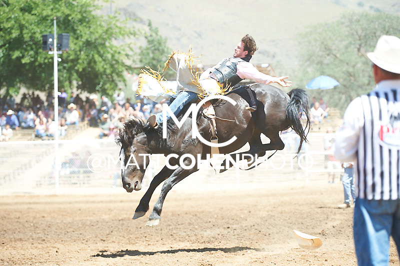 Bareback rider Justin Miller of Billings, MT rides 779 at the Woodlake Lions Rodeo.<br /> <br /> <br /> UNEDITED LOW-RES PREVIEW<br /> <br /> <br /> File shown may be an unedited low resolution version used as a proof only. All prints are 100% guaranteed for quality. Sizes 8x10+ come with a version for personal social media. I am currently not selling downloads for commercial/brand use.
