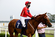 Buto ridden by Charles Bishop trained by Eve Johnson Houghton - Mandatory by-line: Robbie Stephenson/JMP - 13/08/2020 - HORSE RACING - Bath Racecourse - Bath, England - Bath Races
