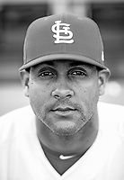 Cardinals Jose Martinez poses for a portrait  on March 2018.<br /> (Photo/Tom DiPace)