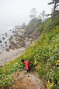 Zach Podell-Eberhardt down climbs a sea stack along the North Coast, Olympic National Park, Washington.