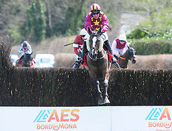 Heron Height's ridden by Robbie Power win the Palmerstown House Pat Taaffe Handicap Chase during day five of the Punchestown Festival 2018 at Punchestown Racecourse, County Kildare.