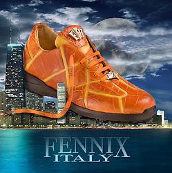 Fennix Shoe over City of Chicago