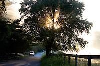 Sunrise sences from Chaddsford, Pa.