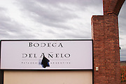 Sign at The entrance to the winery Bodega Del Anelo Winery, also called Finca Roja, Anelo Region, Neuquen, Patagonia, Argentina, South America
