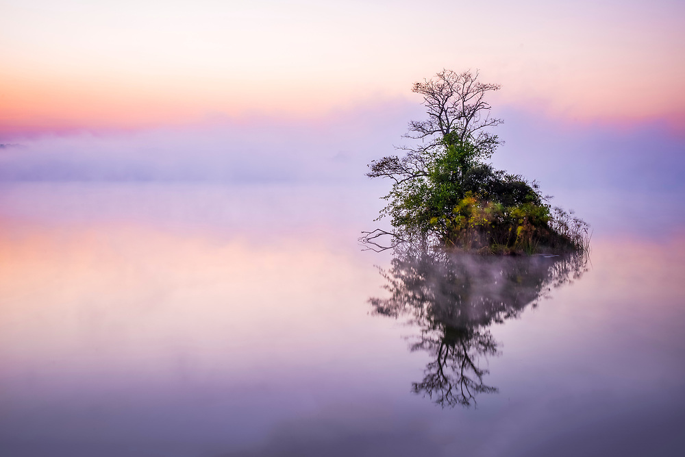 Wamami Lake and its green isle bathed in a thick mist just before sunrise