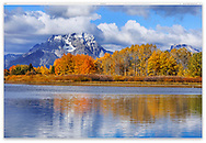 Cloud shrouded peaks following a stormy morning at the Oxbow Bend in the Snake River during  autumn, Grand Teton National Park, Wyoming, USA