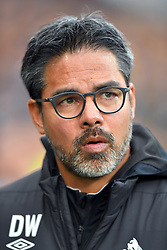 Huddersfield Town manager David Wagner during the Premier League match at the John Smith's Stadium, Huddersfield.