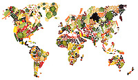 Studio Still life of World map made from Fruit and Vegetables was made for an international food packaging trade show stand. This was printed at 3m wide and took about three days to complete.<br /> Quite a complex job as it needed to be shot at a size that the fruit and veg didn't look under or overwhelming and could represent the UK in a scale that wasn't to small.<br /> I researched all parts of the world to discover what types of food were the main exports of regions so international buyers could see it as an accurate representation. The map was then drawn out to the scale that would work and shot in five sections then photoshopped together. North America, South America, Africa, Europe & Russia and Australasia. Each section was in reality about 5-8ft to be able to shoot at high quality and in the space available to create the work.<br /> Became a talking point and centrepiece for the Trade show. <br /> <br /> All the usable fruit and veg that was left at the end was donated to a homeless charity kitchen, about 20 boxes.