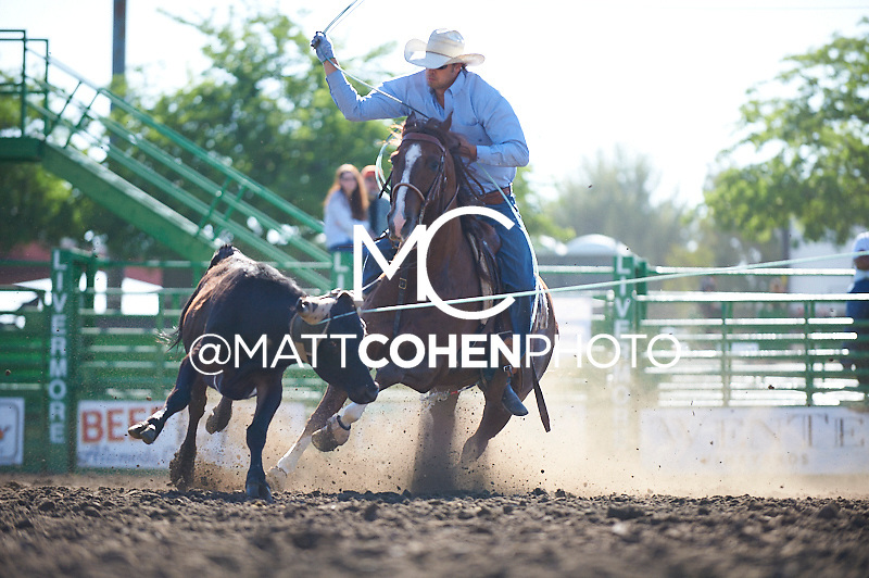 Team roper Jeremy Buhler of Arrowwood, AB competes at the Livermore Rodeo in Livermore, CA<br /> <br /> <br /> UNEDITED LOW-RES PREVIEW<br /> <br /> <br /> File shown may be an unedited low resolution version used as a proof only. All prints are 100% guaranteed for quality. Sizes 8x10+ come with a version for personal social media. I am currently not selling downloads for commercial/brand use.
