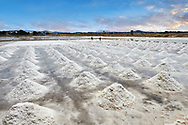 Pictures & images of Men collecting and digging salt in a salt pan on the outskirts of Trapani, Sicily .<br /> <br /> Visit our SICILY PHOTO COLLECTIONS for more   photos  to download or buy as prints https://funkystock.photoshelter.com/gallery-collection/2b-Pictures-Images-of-Sicily-Photos-of-Sicilian-Historic-Landmark-Sites/C0000qAkj8TXCzro<br /> If you prefer to buy from our ALAMY PHOTO LIBRARY  Collection visit : https://www.alamy.com/portfolio/paul-williams-funkystock/trapanimaslalasaltpans.html
