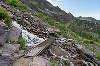 Trail to Comeau Pass Glacier National Park Montana