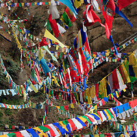 Asia, Bhutan, Thimpu. Prayer Flags on the path up to Taktsang, or Tiger's Nest Monastery.