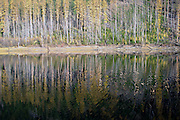 Fish Lakes and western larch forest in fall. Purcell Mountains, northwest Montana.