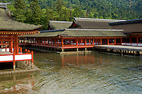 """Itsukushima Shrine - Miyajima Island in the inland sea was once thought to be so sacred that human beings were not permitted to live on it.  Itsukushima Shrine was constructed over water so that humans would not """"pollute"""" the sacred island. Today many ferries carry traffic between the island and Hiroshima.  Because the island is still sacred, trees may not be cut for lumber. Deer roam freely as they are thought to be sacred in the Shinto religion as messengers of the gods."""