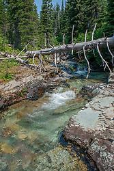 Virginia Creek, Glacier National Park, Montana, US
