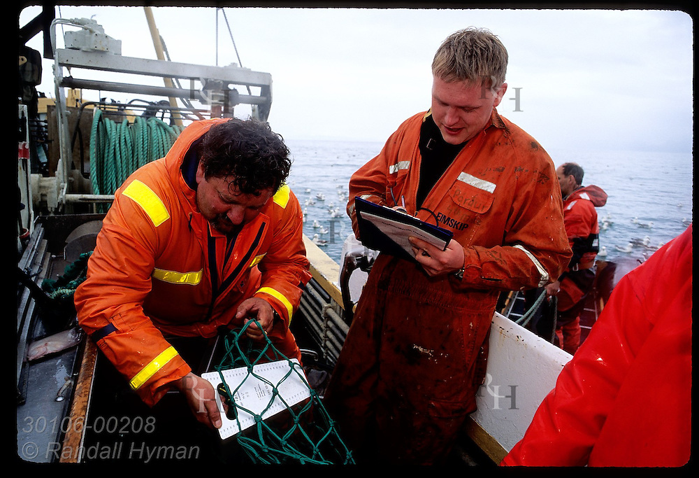 Coast guard men use metal gauge to confirm that net used aboard gillnet boat is legal; Faxafloi. Iceland