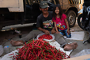An Indonesian man and his daughter sorting and bagging chillis in the street on 9th June 2018, Jakarta, Java, Indonesia.