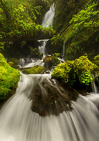 A wide angle view of Merriman Falls in the Quinault Rainforest of Olympic National Park, WA, USA