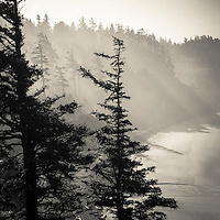Ecola State Park, OR.<br />