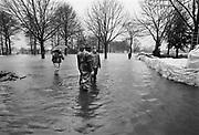 Nederland, Middelaar, 01-02-1995Eind januari, begin februari 1995 steeg het water van de Rijn, Maas en Waal tot record hoogte van 16,64 m. bij Lobith. Een evacuatie van 250.000 mensen was noodzakelijk vanwege het gevaar voor dijkdoorbraak en overstroming. op verschillende zwakke punten werd geprobeerd de dijken te versterken met zandzakken. Hier de situatie langs de Maas.Late January, early February 1995 increased the water of the Rhine, Maas and Waal to a record high of 16.64 meters at Lobith. An evacuation of 250,000 people was needed because of flood risk. At several points people tried to reinforce the dikes with sandbags. Foto: Flip Franssen/Hollandse Hoogte