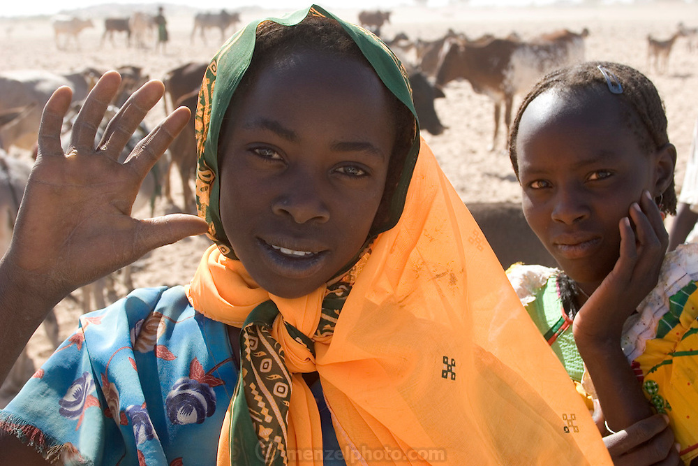 In Dar es Salaam village, eastern Chad, two young girls pause during the daily livestock watering in the dry river wadi. (Supporting image from the project Hungry Planet: What the World Eats.)