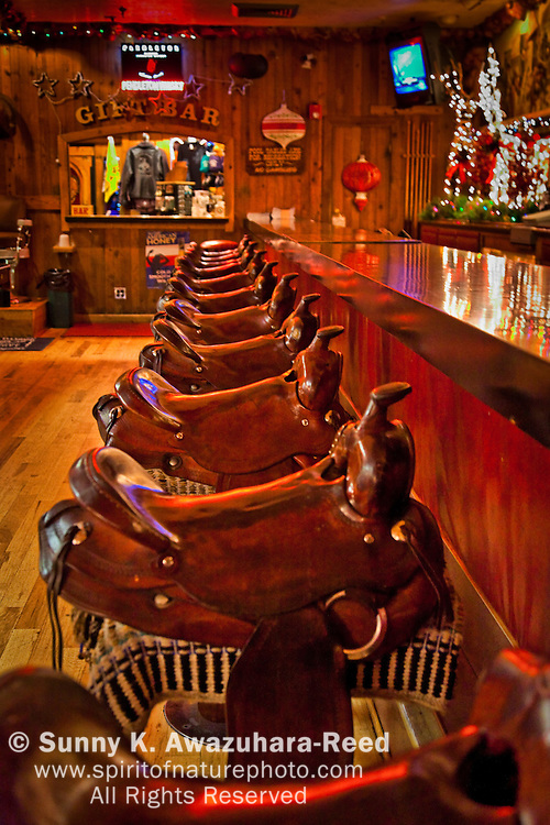 The horse saddle chair at the bar.  The interior of The Million Dollar Cowboy Bar in Jackson Hole, WY.  Christmas Decoration.