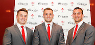 Wales Press Conference 250614