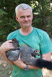 Hugh Maughan Holding Mountain Brushtrail Possum