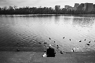 A man sits in isolation feeding birds during the pandemic.