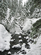 Winter snow covers a forest and stream on Lake 22 trail. The trailhead is on .the Mountain Loop Highway near Verlot Visitor Center, in Mount Baker - Snoqualmie National Forest, in the Central Cascades of Washington, USA.