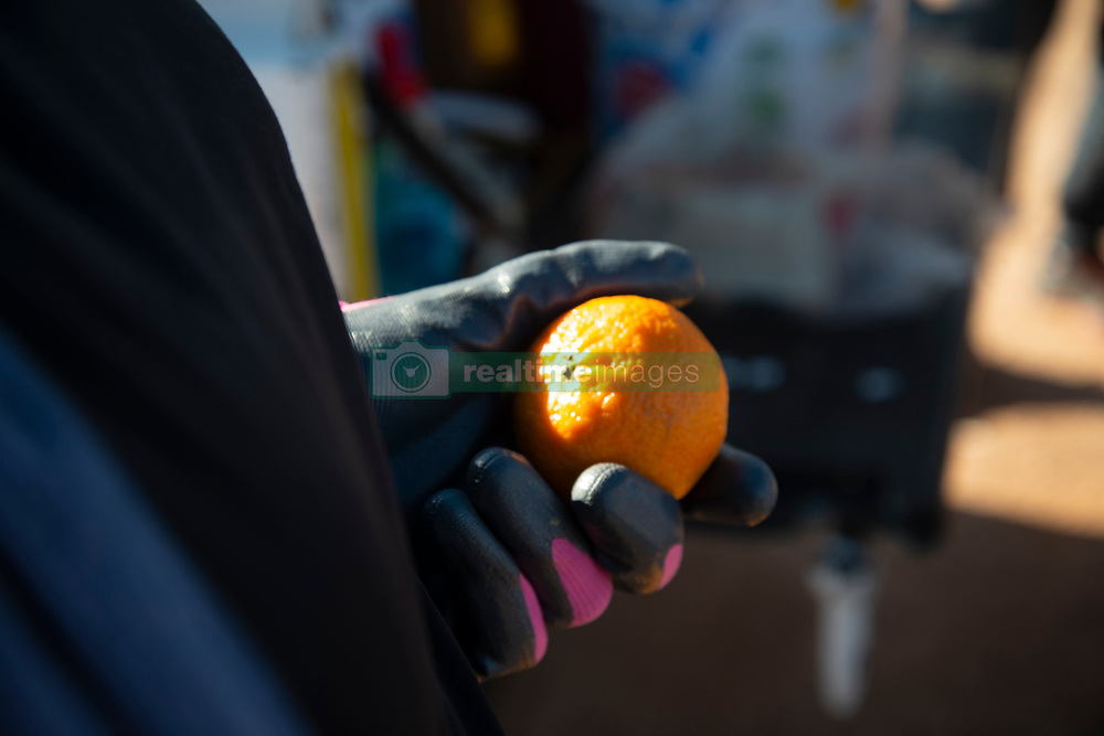 Naartjies (clementines) are handed out at a volunteer food drive in Mountain View, an informal settlement in Jamestown, in the Cape Winelands District, on Saturday, May 29, 2020. It's estimated that most, if not all, of the households here had no income, due to unemployement during lockdown. Cape Winelands is one of the districts in the Western Cape that has been designated a hotspot area, in terms of people testing positive for COVID-19. When South Africa moves down to Stage 3 of the nationwide lockdown on June 1st, hotspots areas will remain under stricter regulation and surveillance, per the latest government announcements. PHOTO: EVA-LOTTA JANSSON