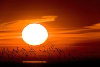 20.04.2009<br /> Sunrise in Hallig Hooge, Germany