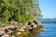 Park bench along the shore of Biggs Park in Nanaimo, British Columbia, Canada