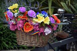 Flowers on a bike, Norwich Pride 30 July 2016 UK
