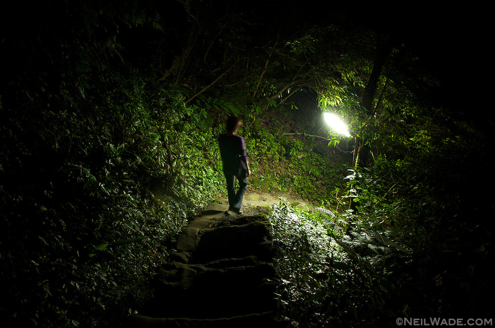 Waking through the forest by one's self at night can be spooky.